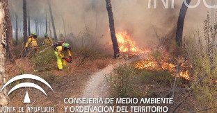 Incendio cartaya